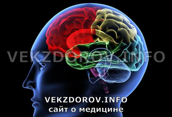 Последствия асимметрии полушарий головного мозга