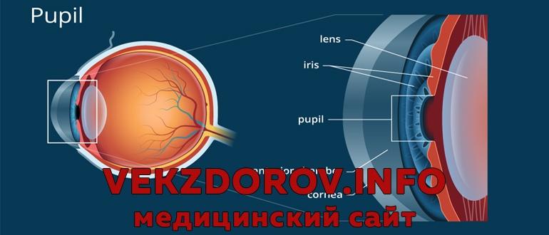 Причины, симптомы и лечение неврита зрительного нерва