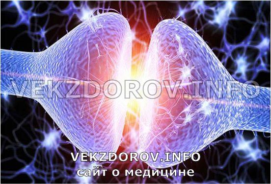 действие эндорфина