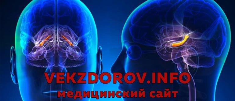 Симптомы внутричерепного объемного образования, или признаки рака головного мозга