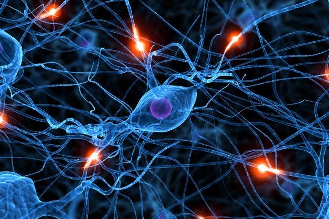Смерть мозга - постановка диагноза, медицинские и этические проблемы